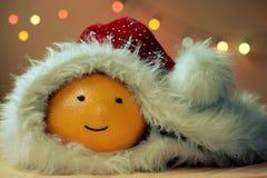 与盖帽的圣诞节滑稽的桔子 库存图片