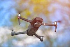 与盘旋在forrest,自然本底里面的照相机的飞行的寄生虫 免版税库存照片