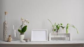 与相框大模型的现代室装饰 架子对有装饰蜡烛、玻璃和岩石的白色墙壁 植物切口 股票录像