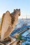 与看巴黎地平线的翼的面貌古怪的人 库存照片