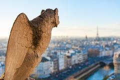 与看巴黎地平线的翼的面貌古怪的人 图库摄影
