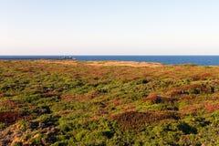 与眺望台人的沿海风景底部的 免版税库存照片