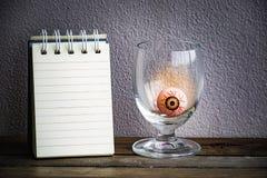 与眼睛球的笔记薄在木头和墙壁背景的玻璃 使用墙纸或背景万圣夜天图象的 免版税库存图片