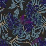 与眼睛的夜热带叶子样式在中部 向量例证