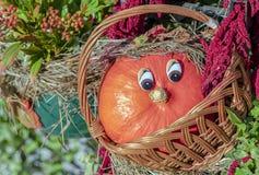 与眼睛的橙色微型南瓜在藤条篮子 免版税库存照片