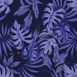 与眼睛豹的夜热带叶子样式 免版税库存照片