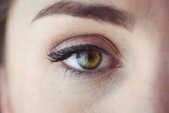 与眼线膏和眼影膏的眼睛 库存图片