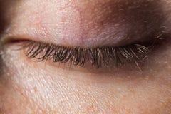 与睫毛的一只真正的人的闭合的眼睛没有构成和修饰的宏指令 免版税库存照片