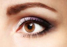 与睫毛的女性眼睛关闭图象 有棕色妇女眼睛的眼眉 免版税库存照片