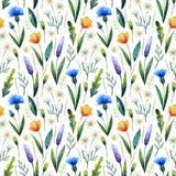与矢车菊的水彩无缝的样式,春黄菊 背景细部图花卉向量 手拉的野花 免版税库存图片