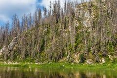 与石头的横向 西伯利亚的北部的河 俄国 图库摄影