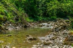 与石床的小河在阳光期间的森林里 免版税图库摄影