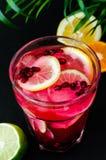 与石榴石种子和切片的冷的limonade柑橘,绿色棕榈叶 免版税库存照片