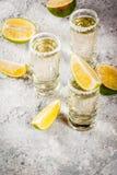 与石灰和盐的龙舌兰酒射击 库存照片