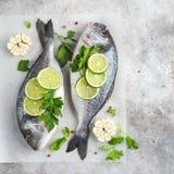 与石灰和荷兰芹的两条未加工的dorado鱼准备好对烹调 免版税库存图片