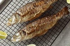 与石灰的两条被烘烤的鲈鱼鱼 库存照片
