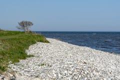 与石灰石的瑞典海岸 免版税库存图片