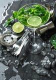 与石灰,薄菏,冰的鸡尾酒饮料 酒吧辅助部件 库存图片