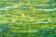 与石纹理的抽象绿色减速火箭的背景 库存图片