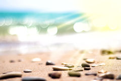 与石头选择聚焦的海滨 库存图片