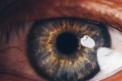 与破裂红色血管的宏观眼睛 用血液关闭盖的眼珠 视觉问题 注视开放宽 图库摄影