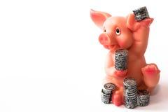 与硬币的猪 库存照片