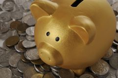与硬币的金黄Piggybank 图库摄影