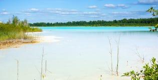 与碱性湖的重要环境区域 免版税图库摄影