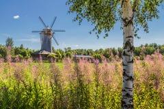 与磨房和桦树的夏天风景 免版税库存图片