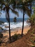 与礁石的热带海滩 免版税库存图片