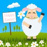 与祝愿复活节快乐的花的羊羔 库存例证