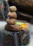 与禅宗岩石的橙色野花在流动的水 库存照片