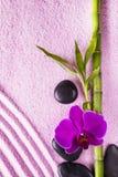 与禅宗庭院的温泉 图库摄影