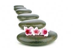 与禅宗石头和花的温泉概念 免版税库存照片