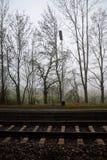 与秃头树的铁路轨道在雾在冬天 库存照片