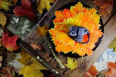 与秋叶和照相机的蛋糕 库存照片