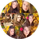 与秋叶和秋天黄色庭院backgr的美好的模型 库存图片