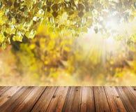 与秋叶和老木桌的背景 免版税库存图片