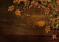 与秋叶和花揪的难看的东西木背景 免版税库存照片