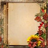 与秋叶和花揪的难看的东西背景 图库摄影