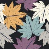 与秋叶的不尽的样式 库存照片