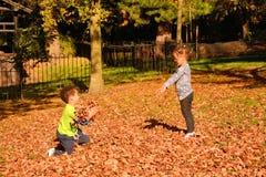 与秋叶的乐趣 免版税库存照片