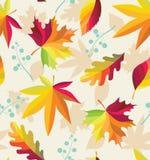 与秋叶的五颜六色的无缝的样式 皇族释放例证