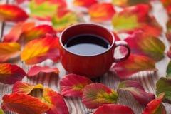 与秋叶的咖啡 免版税库存图片