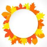 与秋叶的圆的纸在背景,在传染媒介 库存图片