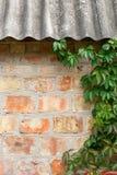 与秋叶的庭院狂放的葡萄在砖墙上 图库摄影