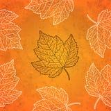 与秋叶的样式在桔子 免版税库存照片