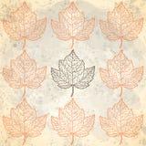 与秋叶的样式在灰棕色 库存照片