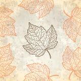 与秋叶的样式在灰棕色 免版税图库摄影