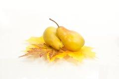 与秋叶的梨 免版税图库摄影